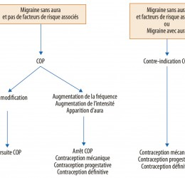 Contraception chez la patiente migraineuse - Contraception chez la patiente migraineuse - Figure